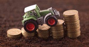 Начинающим фермерам распределили субсидий на 27 с лишним миллионов