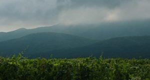На Алтае в субботу ожидаются кратковременные дожди и грозы