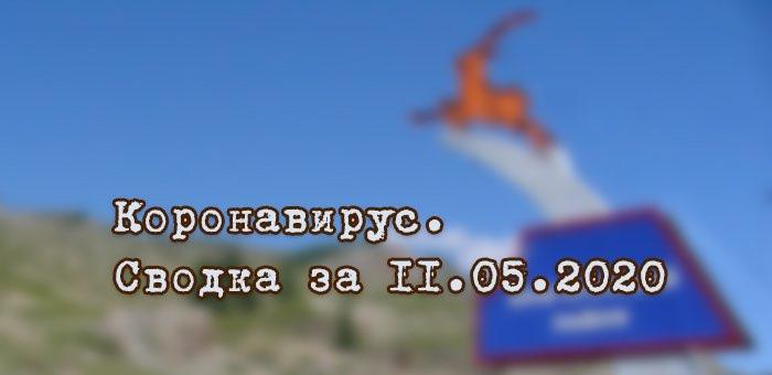 Ситуация с коронавирусом в Республике Алтай. Сводка за 11 мая
