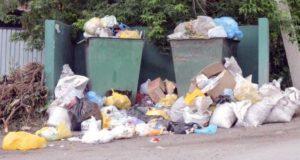 Директора «Коммунальщика» оштрафовали за несвоевременный вывоз мусора