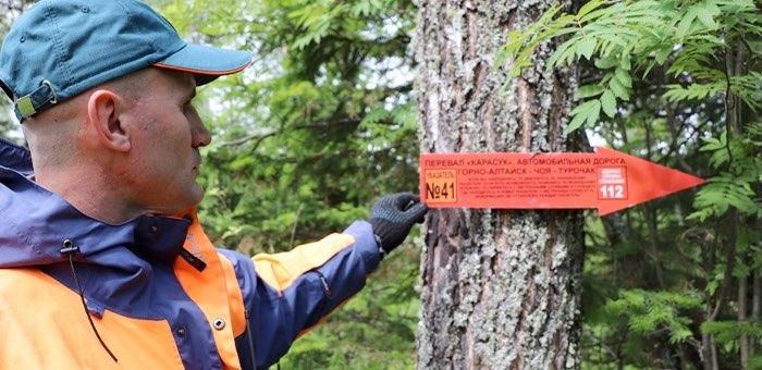 Спасатели установили 50 указателей для заблудившихся в лесу