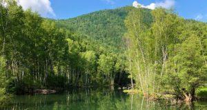 Республика Алтай сохраняет место в тройке лидеров рейтинга «Зеленого патруля»