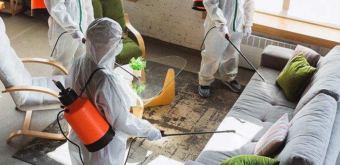 Восемь новых случаев заражения коронавирусом выявлено в Республике Алтай
