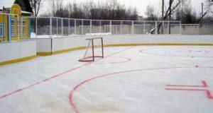 В десяти селах Республики Алтай установят хоккейные коробки