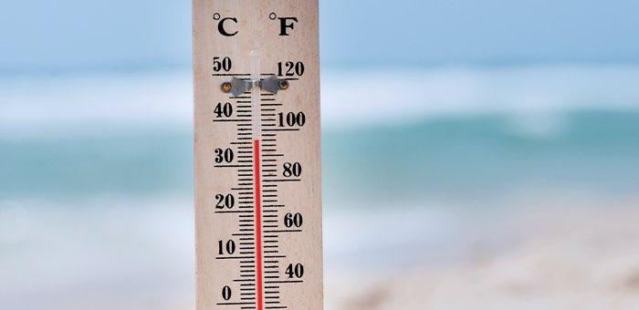 На Алтае прогнозируется аномальная жара, объявлено экстренное предупреждение
