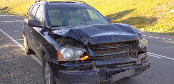 Два автомобиля Volvo с туристами столкнулись на Чуйском тракте
