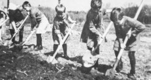 «С утра до вечера работали в колхозе, а ночью вязали варежки для фронта». Как дети Ойротии жили в годы войны