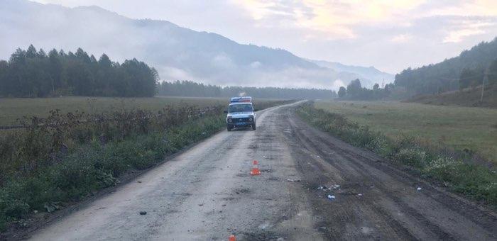 14-летний мальчик ночью на мотоцикле врезался в лошадь и попал в больницу