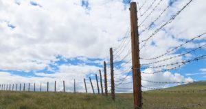 Восемь километров ограждений из колючей проволоки демонтировали на плато Укок