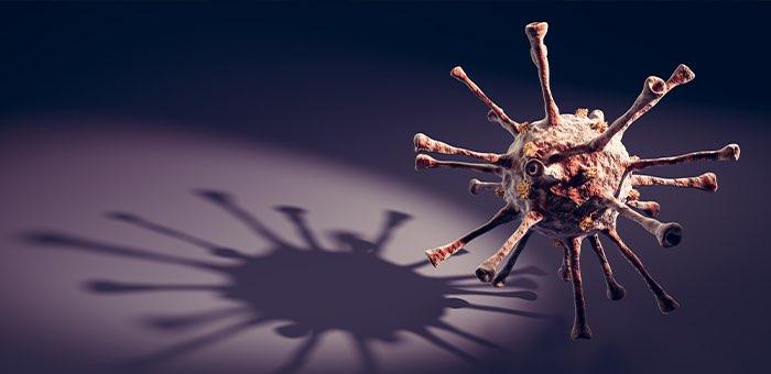 За сутки выявлено 147 случаев заражения коронавирусом. Лидируют Горно-Алтайск и Майма