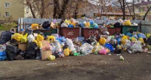 Глава администрации прокомментировала ситуацию с уборкой и вывозом мусора в Горно-Алтайске