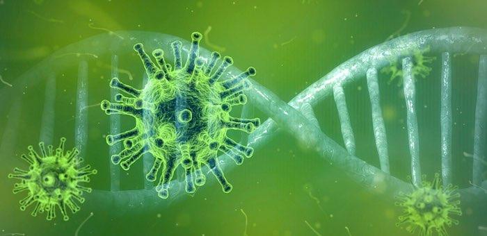 88 новых случая заражения коронавирусом. Лидируют Горно-Алтайск, Онгудайский и Кош-Агачский районы
