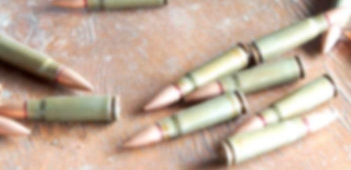 Не менее восьми выстрелов в голову, грудь и живот: житель Талды расстрелял своего брата