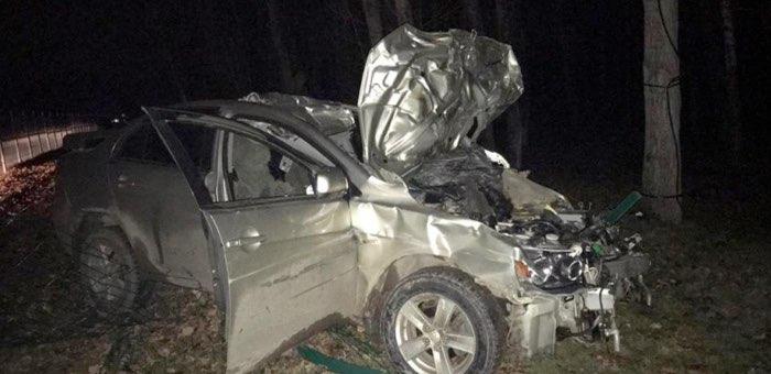 Два человека получили тяжелые травмы из-за столкновения автомобиля с лошадью