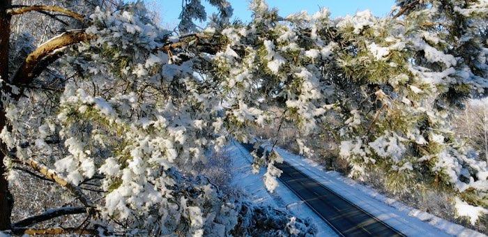 Прогноз погоды: преимущественно без осадков, небольшой мороз
