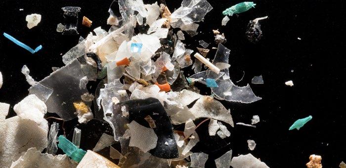 В Катунском заповеднике микропластика в шесть раз меньше, чем в Швейцарских Альпах