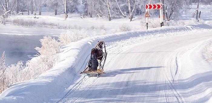 Морозная погода без осадков сохранится на Алтае до конца недели