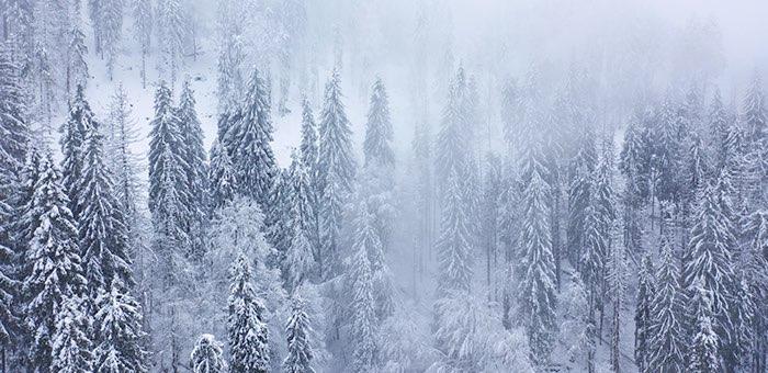 Снегопады и ослабление морозов ожидаются на Алтае