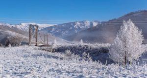 Два морозных дня и теплые выходные прогнозируют синоптики