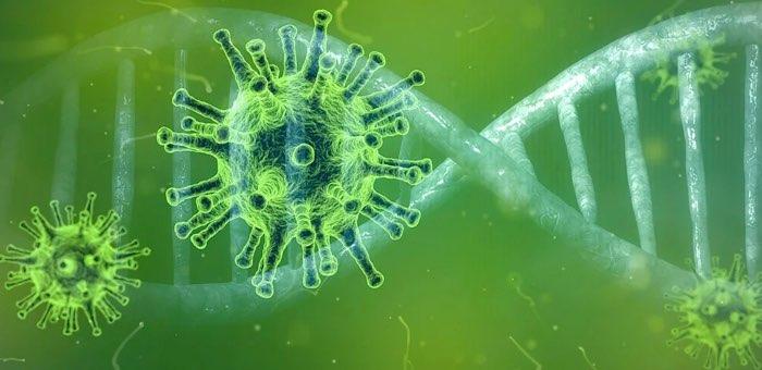 В республике за сутки выявлено 13 случаев заражения коронавирусом