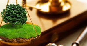 Стартовала Неделя приема граждан по вопросам сельского хозяйства и земельных отношений