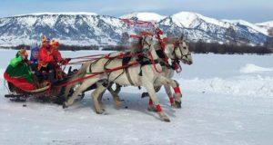 В Усть-Коксинском районе прошли соревнования по конному спорту