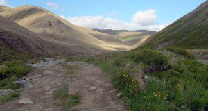 Дорогу из Тувы в Республику Алтай начнут строить в этом году
