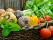 В Горно-Алтайске начала работать Школа садовода