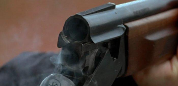 Полицейский расстрелял девять лошадей и ранил еще двух
