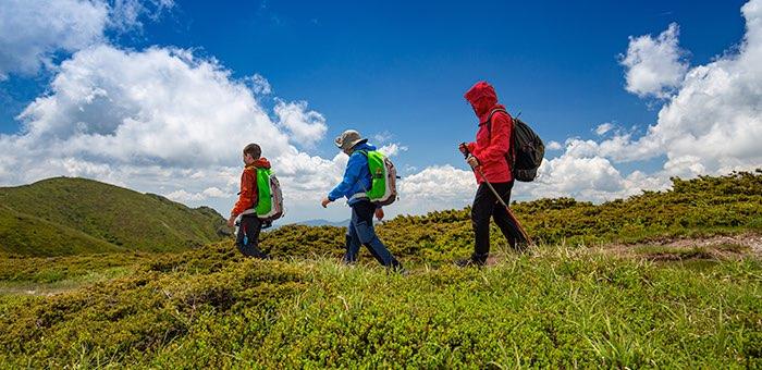 Определены победители конкурсов на получение субсидий на развитие туризма