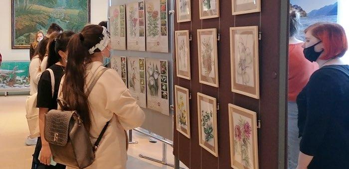 Выставка «Исчезающая красота» работает в Национальном музее