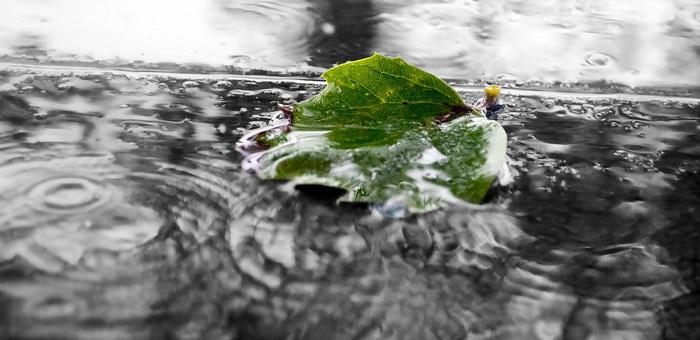 Синоптики сообщили прогноз погоды на «майские выходные»