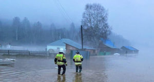 Паводковая ситуация в Республике Алтай: сводка от МЧС