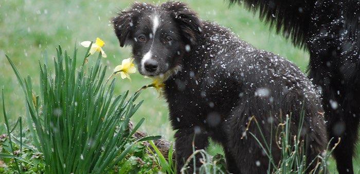 Прогноз погоды: похолодание, дожди, возможен мокрый снег