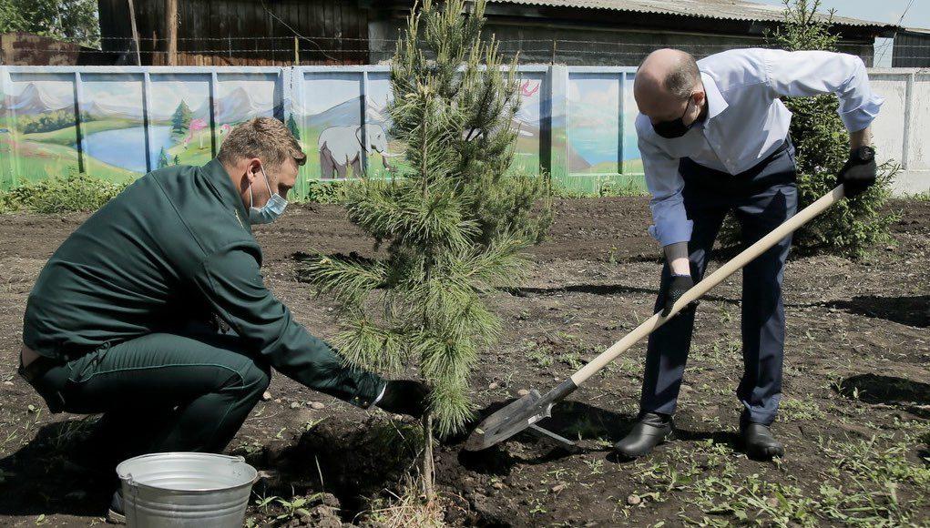 Акция «Сад памяти» прошла в Горно-Алтайске