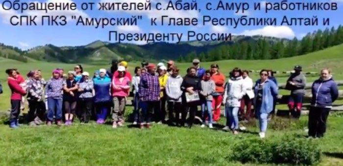 «На грани развала»: работники СПК «Амурский» обратились к президенту и главе республики