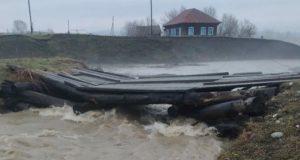 Осадки становятся экстремальными: как «глобальное потепление» проявляется на Алтае
