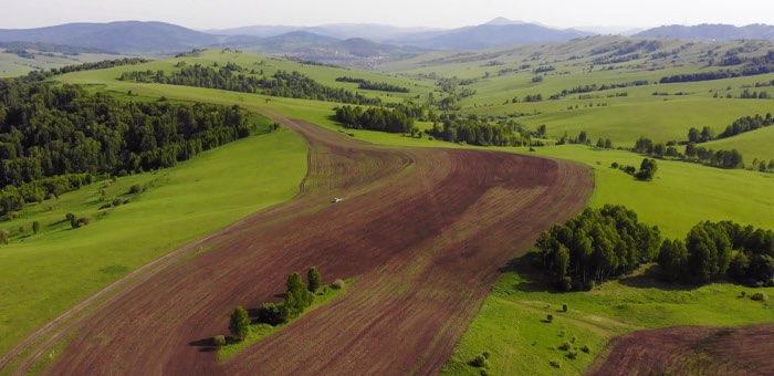 Современная аграрная политика станет частью народной программы «Единой России»
