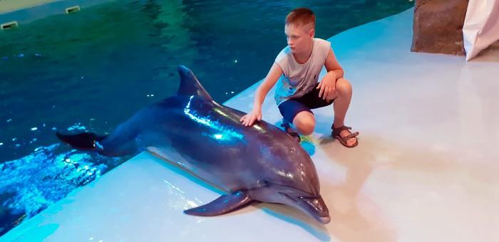 Мечты сбываются! Ребенок из Шебалинского района побывал на море и пообщался с дельфинами