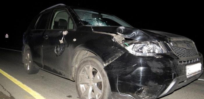 В Курайской степи под колесами автомобиля погиб пешеход