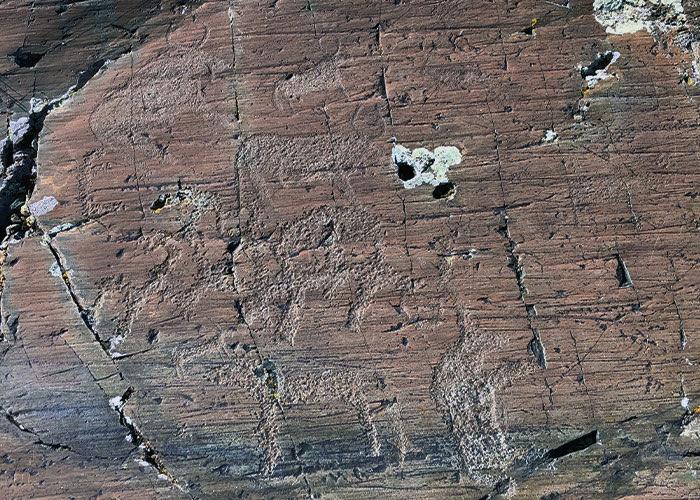 Петроглифы в Елангаше
