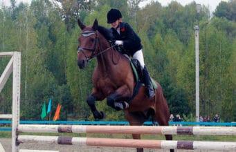 Соревнования по конному спорту прошли в Горно-Алтайске в День города
