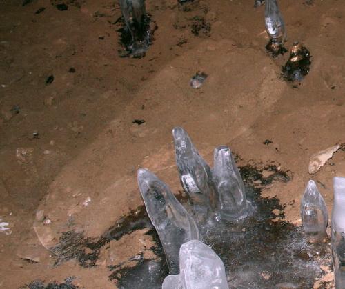 Считается, что на фотографии, сделанной охотниками, отчетливо видны пальцы ног гоминида