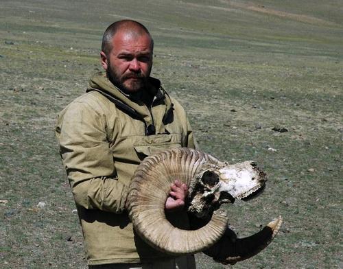 В ходе экспедиции на хребет Сайлюгем экологи нашли останки аргали