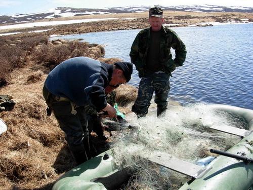 Инспекторы изъяли несколько сот метров рыболовных сетей