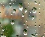 На выходных ожидается дождливая погода