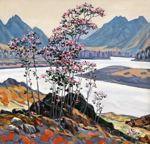 «Цветы маральника», 2004 год