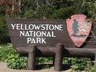 Выпускники алтайской школы гидов посетили Yellowstone National Park (фото)