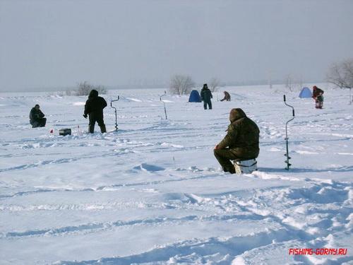 На пруду села Урожайное прошли соревнования по ловле рыбы на мормышку