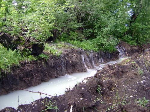 Молокозавод сбрасывал сточные воды в Катунь